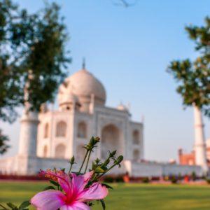 massage indien temple